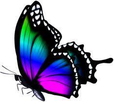 Бабочки: лучшие изображения (9) в 2020 г. | Бабочки, Рисунки и ...