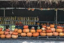 orange Pumpkin - it's <b>Helloween time</b> by Denis Winkler. Photo stock ...