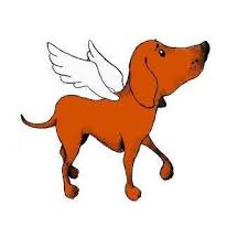 <b>Angel Dog</b> Rescue - Home | Facebook
