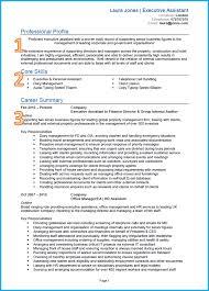 ceo cv sample word online resume builder ceo cv sample word general manager cv sample dayjob examples of cv business