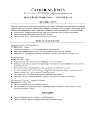Sales Professional Resume  Channel Sales    pharmaceutical resume