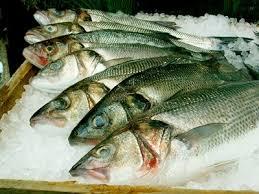 Image result for Como fazer boas compras de pescados para a Páscoa