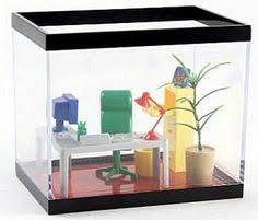 jellyfish tank jellyfish and tanks on pinterest office desk aquarium