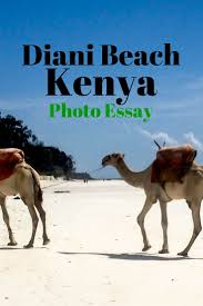 best ideas about diani beach mombasa kenia and diani beach a photo essay of the jewel of