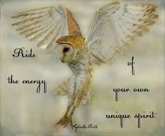 quotes on Pinterest | Owl Quotes, Tiger Quotes and Truths