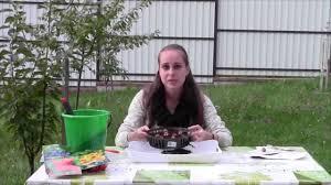 Использование корзинок для посадки <b>луковичных</b> - YouTube