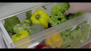 Haier <b>New</b> Bottom Mounted Refrigerator - YouTube