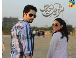 Hum tv Drama Sharik e Haiyat  – Episode 13 -7th February 2014