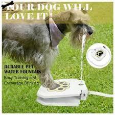 Выгодная цена на silicone <b>dog toy</b> — суперскидки на silicone <b>dog</b> ...