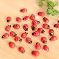 <b>Ladybug</b> Kid Toys Online