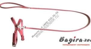 комплект для животных аркон техно цвет красный белый 2 предмета кт32