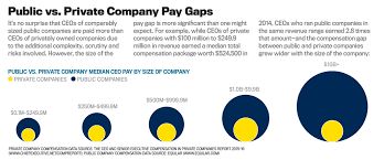 ceo pay in private companies net chief executive comp report new