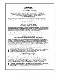 banker resume examples banker resume business analyst resum sample banker resume examples