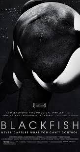 <b>Blackfish</b> (2013) - IMDb