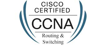 resume ccna training ccna cv sample ccna cv sample bsc it resume format for freshers