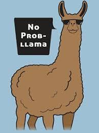 <b>No Prob Llama</b> T-Shirts | Redbubble