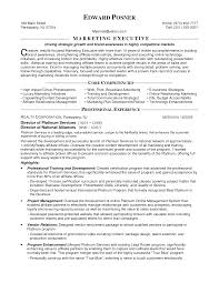 regional manager resume examples  executive level resume samples    marketing executive resume samples