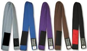 Image result for jiu jitsu belts