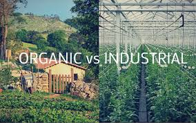 organic farming vs factory essay essay keep the environment beautiful we are protecters organic farming vs factory essay family