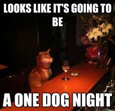 Drinking Alone Dog memes | quickmeme via Relatably.com