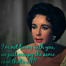 images about cat on a hot tin roof on pinterest   elizabeth    elizabeth taylor maggie  quot cat on a hot tin roof quot