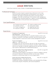 professional lance programmer templates to showcase your resume templates lance programmer