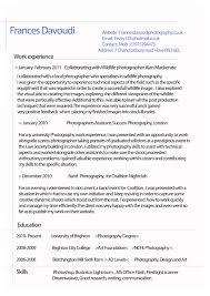 resume  examples of a good resume  corezume coexamples of