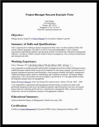 resume objective statement examples resume objective statement examples 3234
