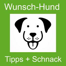 wunsch-hund Tipps + Schnack: Der Podcast mit Wunschhund