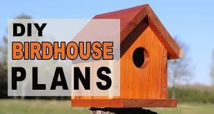 <b>BirdHouse</b> Plans (Easy One-Board <b>DIY</b> Project)