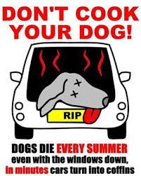 Προσοχή το καλοκαίρι ακόμη και στις αιμορραγίες...