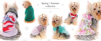 DogDogCollection Welcome *** <b>Pet Clothes</b>-<b>Spring</b> Summer ***