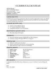 nanny resume sample resumes  seangarrette conanny