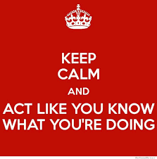 Keep Calm And Act Like You Know What You're Doing | WeKnowMemes via Relatably.com