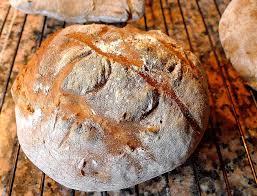 Risultati immagini per masticare pane