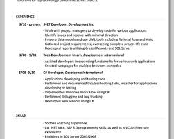 What To Put Your Resume In Resume For Your Job Application