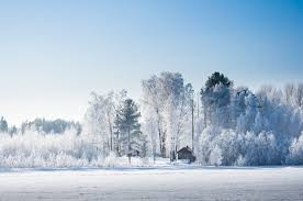 Bildresultat för snö