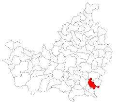 Viișoara, Cluj