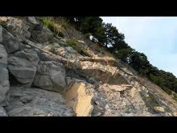 Кемпинг в Архипо-Осиповке «Сосновый Берег»