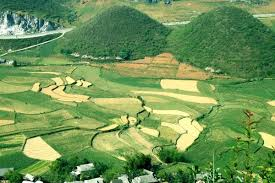 Image result for Núi đôi quản bạ