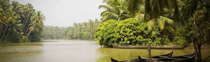 Image result for azhapuzha