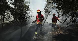 Três bombeiros sofreram ferimentos ligeiros no fogo florestal de Alandroal