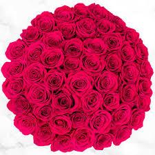 50-stem Hot <b>Pink Roses</b>