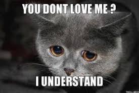 you-dont-love-me-i-understand-thumb.jpg via Relatably.com