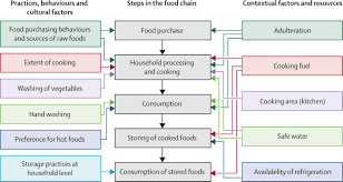 a case for refining the who global strategy on food safety view hi res