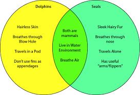 vocabulary   strategies   tools   resourcesvenn diagram