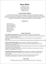 Professional Audit Assistant Resume Templates to Showcase Your     Resume Templates  Audit Assistant Resume
