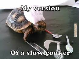 FunnyMemes.com • Animal memes - Slow cooker via Relatably.com
