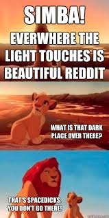 Look, Simba! Everwhere the light touches is beautiful reddit What ... via Relatably.com