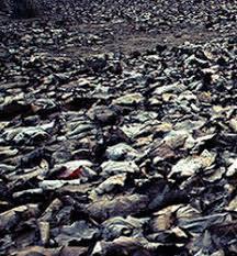 「唐山地震」の画像検索結果